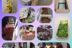 Projeto SerSocial realiza atendimentos às famílias durante a pandemia da COVID-19.